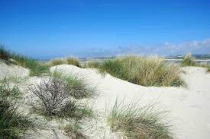 Le Touquet Sand Dunes