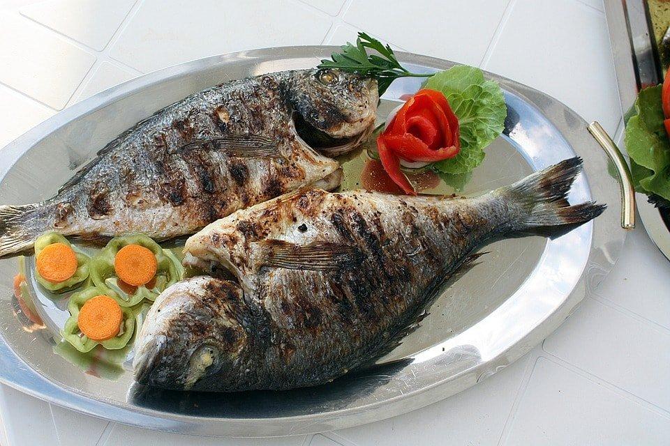Fish Le Touquet