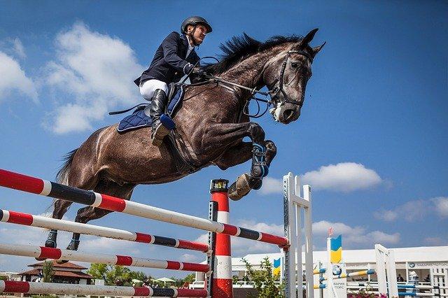 Le Touquet Show Jumping