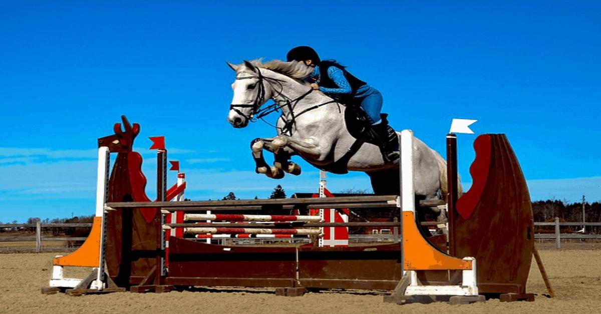 Show Jumping Le Touquet