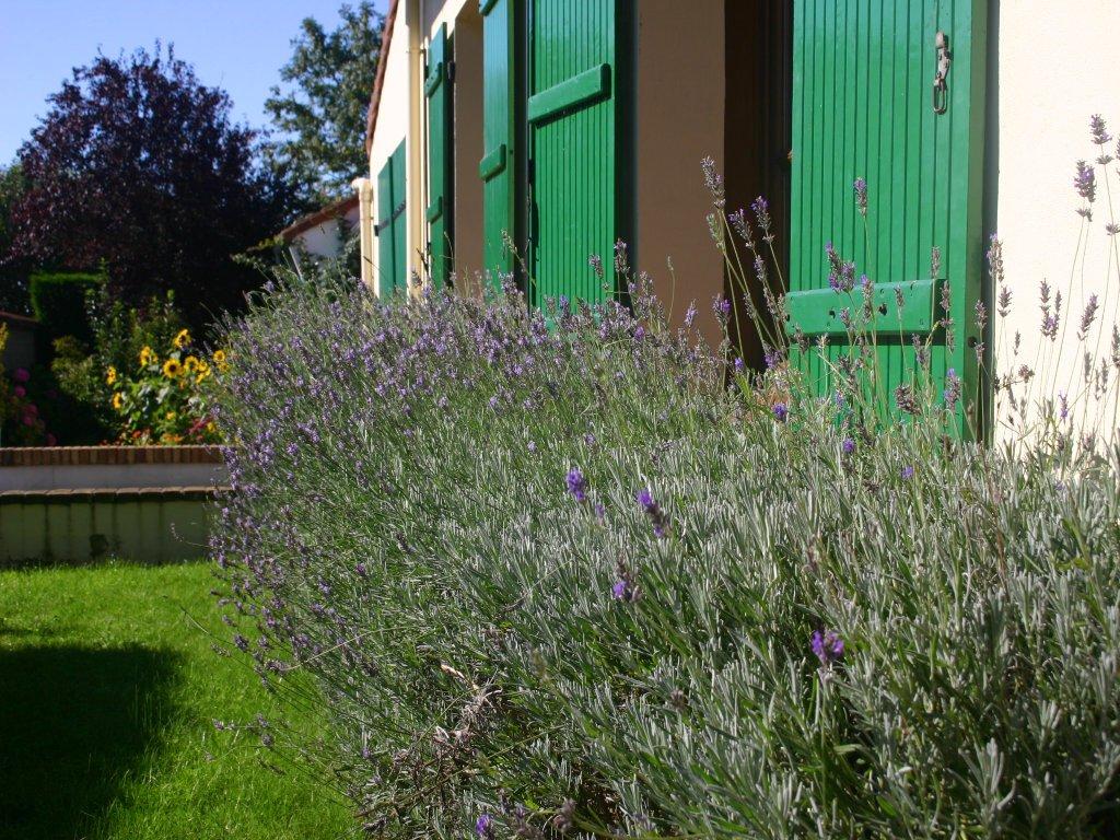 St-Josee-Farmhouse-Lavender